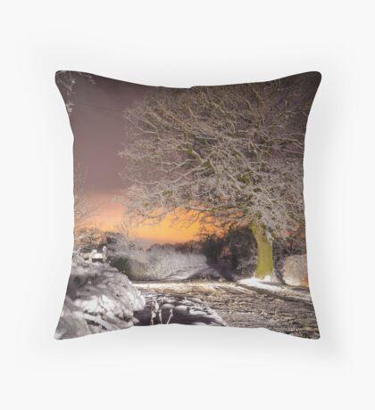 Night snow scene  Throw Pillow