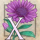 X is for Xeranthemum card by Stephanie Smith
