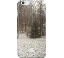 Pine in Snow at the Edge of the Forest iPhone Case/Skin