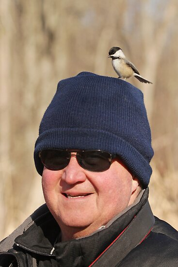 """Hey Honey ~ You Have A Chickadee On Your Head !"" by Renee Blake"