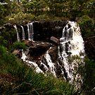Bush Water Pit by MissResin