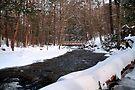 Snowy Crossing Over Kitchen Creek by Gene Walls