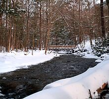 Snowy Crossing Over Kitchen Creek by Gene Walls
