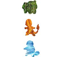 Starters Elements Photographic Print