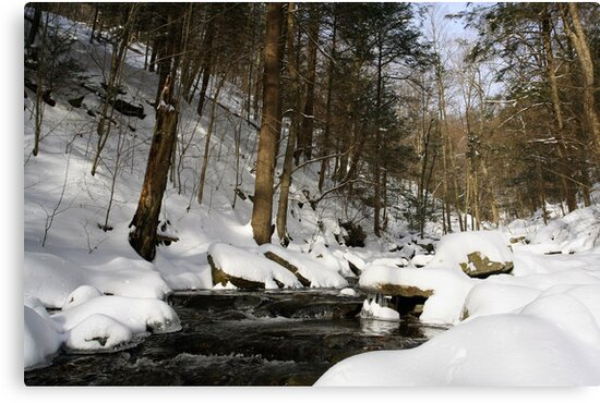Virgin Snow Along Kitchen Creek by Gene Walls