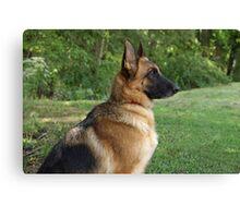 German Shepherd Profile Canvas Print
