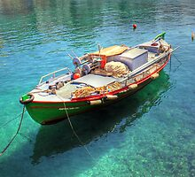 Little fishing boat from Crete  by larry flewers