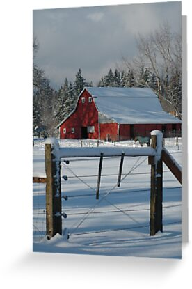 Red Barn Snowed in the Winter by jcimagery
