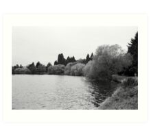 Green Lake, Fall, Seattle, Washington Art Print