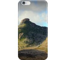 destruction and regrowth seen from Johnston's Ridge iPhone Case/Skin