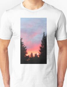 Sunset in the Suburbs  Unisex T-Shirt