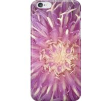 Pink And Yellow Pincushion Flower iPhone Case/Skin