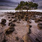I Stand Alone, Brighton, Queensland, Australia by Aaron  Bishop