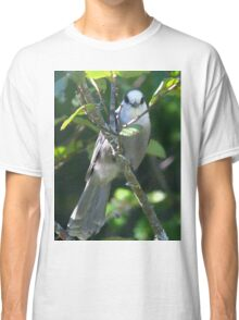 Gray Jay Classic T-Shirt