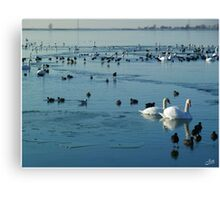 The Conquest of Water Canvas Print