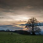 Devonshire Sunset by David Tinsley