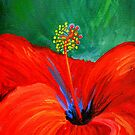 Red hibiscus by Leanne Wilson