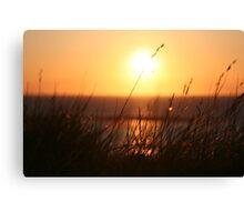 A Gentle Summers Breeze Canvas Print