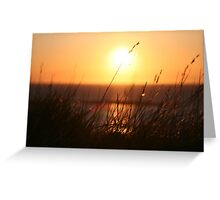 A Gentle Summers Breeze Greeting Card