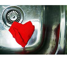 130/365  even in the kitchen sink..... Photographic Print