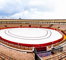 Arena Sevilla panorama, Spain by LaurentS