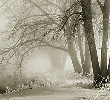 Winter Silence by Gregory J Summers
