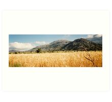Cereal Field - Lasithi Art Print