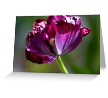 Beauty fading away Greeting Card
