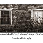 &quot;Abandoned&quot; by Bob Adams