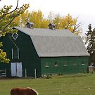 The Green Barn by Kathi Arnell