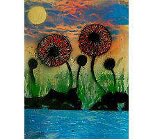 Giant Flowers by the Lake Photographic Print