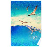 landscape waves and seagulls Poster