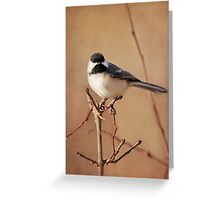 My Pretty Chickadee ~ Greeting Card