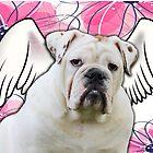 White Winged English Bulldog by klh0853