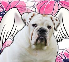 White Winged English Bulldog by klh0853