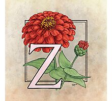 Z is for Zinnia Photographic Print