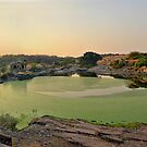 Ranthambore Lake by Peter Hammer