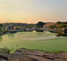 Ranthambore Lake by Peter Hammer
