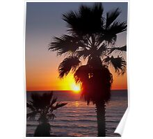 encinitas sunset Poster
