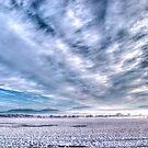 Bilsdale West Moor by Darren Allen