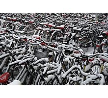 Sea of bicycles Photographic Print