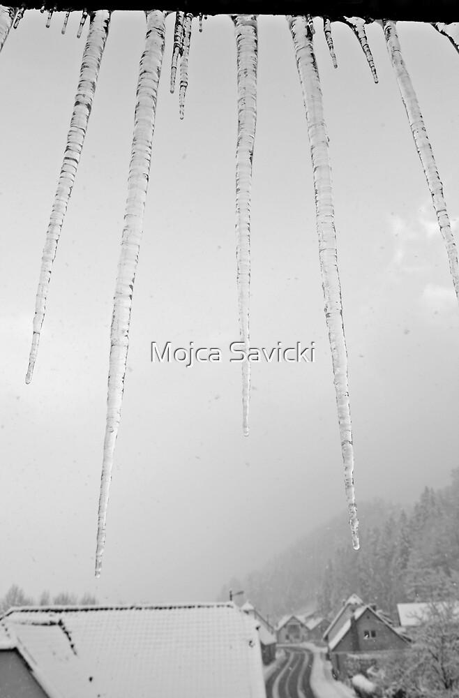 Icicles by Mojca Savicki