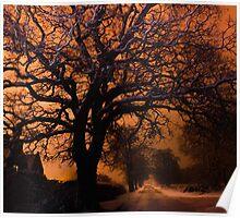 Long exposure oak tree  Poster