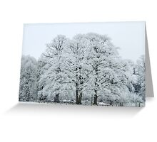 Frozen and Frosted Trees Greeting Card