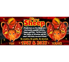 Chinese zodiac Fire Sheep 1967,2027 Photographic Print