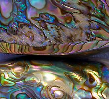 """Day 18 