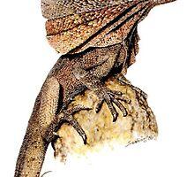 Frill Lizard by ZiyaEris