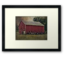 Cows by the Barn Framed Print