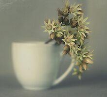 One cup of flower..... by Lynda Heins