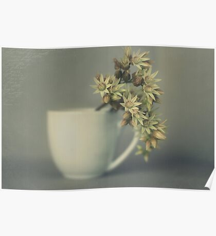 One cup of flower..... Poster